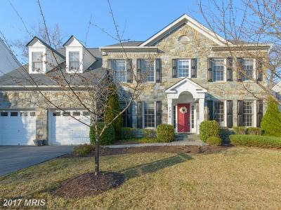 Anne Arundel Single Family Home For Sale: 2906 Boyds Cove Drive