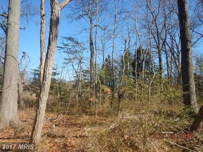 Anne Arundel Residential Lots & Land For Sale: 1231 Poplar Avenue