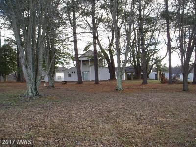 Davidsonville Single Family Home For Sale: 315 Brick Church Road