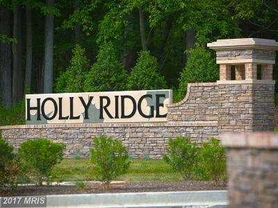 Glen Burnie Single Family Home For Sale: 7615 Holly Ridge Drive