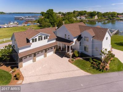 Edgewater Single Family Home For Sale: 1145 Turkey Point Road