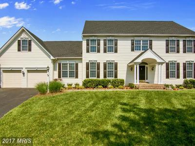 Davidsonville Single Family Home For Sale: 1343 Anglesey Drive