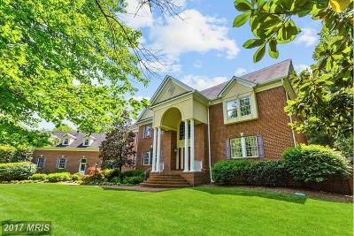 Severna Park Single Family Home For Sale: 950 Old County Road