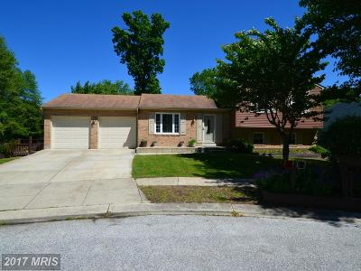 Churchton Single Family Home For Sale: 5505 Berkley Manor Lane