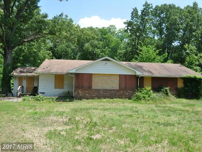 Churchton Single Family Home For Sale: 5455 Muddy Creek Road