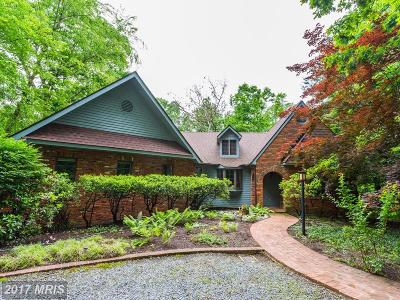 Edgewater, Mayo Single Family Home For Sale: 2809 Clove Lane