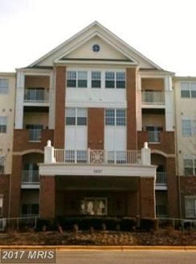 Gambrills Condo For Sale: 2607 Chapel Lake Drive #303