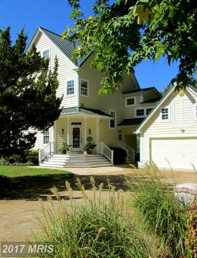 West River Single Family Home For Sale: 4924 Chalk Point Road E
