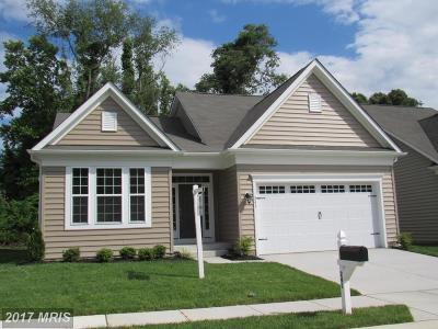 Glen Burnie Single Family Home For Sale: 241 Saltgrass Drive