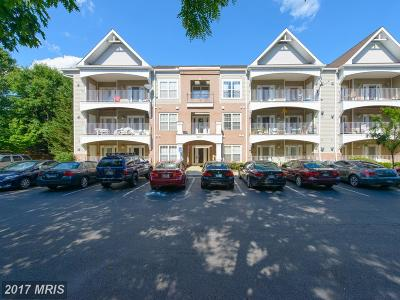 Annapolis Condo For Sale: 2001 Warners Terrace N #207