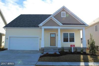 Severn Single Family Home For Sale: 1705 Willard Way