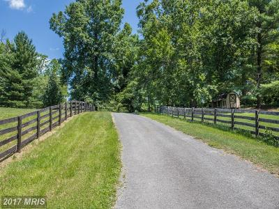 Anne Arundel Farm For Sale: 4828 Polling House Road