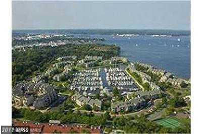 Annapolis Condo For Sale: 7034 Harbour Village T2 Court #T2