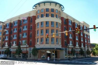 Arlington Condo For Sale: 2200 Westmoreland Street #412
