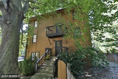 Arlington Rental For Rent: 7009 Fairfax Drive
