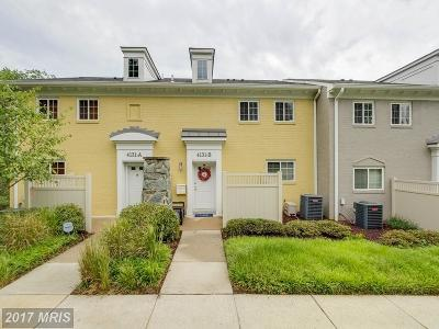 Arlington Townhouse For Sale: 4131 Four Mile Run Drive #B