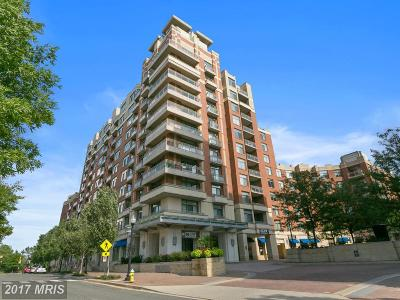 Arlington Condo For Sale: 3650 Glebe Road #439