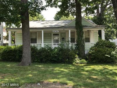 Arlington Single Family Home For Sale: 813 Quincy Street S