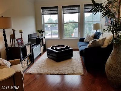 Arlington Condo For Sale: 2101 Monroe Street #317