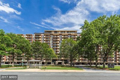 Arlington Rental For Rent: 1300 Army Navy Drive #924