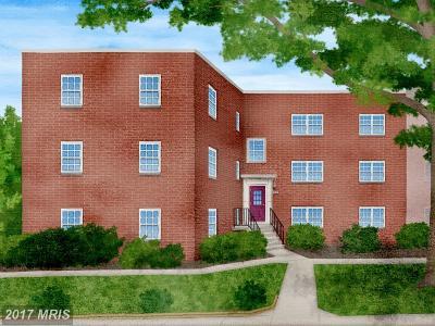 Arlington Condo For Sale: 5224 8th Road S #7