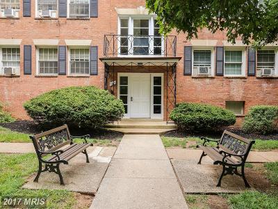 Arlington Condo For Sale: 5005 10th Street S #6