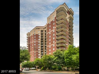 Arlington Rental For Rent: 901 Monroe Street N #913