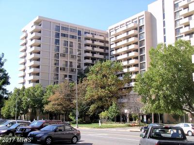 Arlington Rental For Rent: 4141 Henderson Road #405