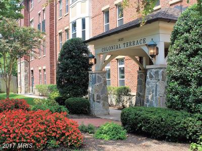 Arlington Condo For Sale: 1633 Colonial Terrace #106