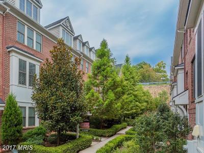 Arlington Townhouse For Sale: 3353 Kemper Road S