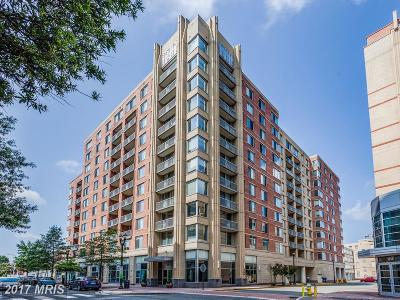 Arlington Rental For Rent: 1020 Highland Street #616