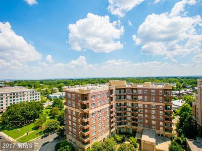 Arlington Condo For Sale: 3800 Fairfax Drive #1214