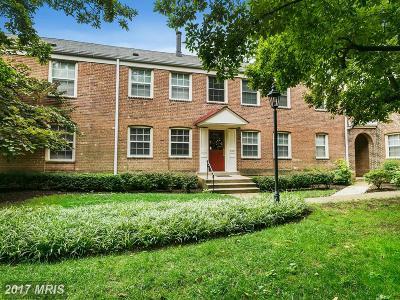 Arlington Condo For Sale: 2409 Arlington Boulevard #101