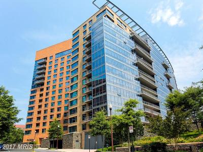 Arlington Condo For Sale: 2001 15th Street N #1210