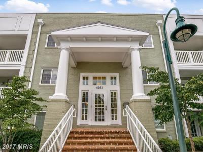 Arlington Condo For Sale: 4161 Four Mile Run Drive #402