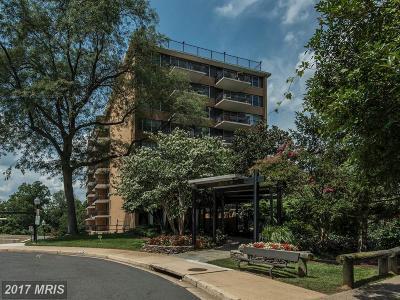 Arlington Condo For Sale: 2030 Adams Street #1404
