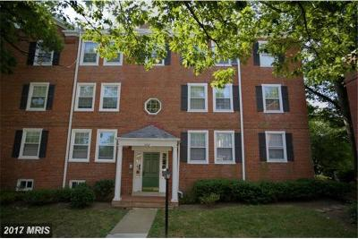 Fairlington Village, Fairlington Villages, Fairlington Vil Rental For Rent: 4862 28th Street S #B2