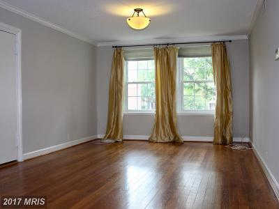 Arlington Rental For Rent: 2918 Buchanan Street #B1