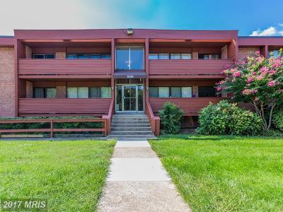 Arlington Condo For Sale: 1509 George Mason Drive S #11