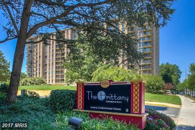 Arlington Rental For Rent: 4500 Four Mile Run Drive #627