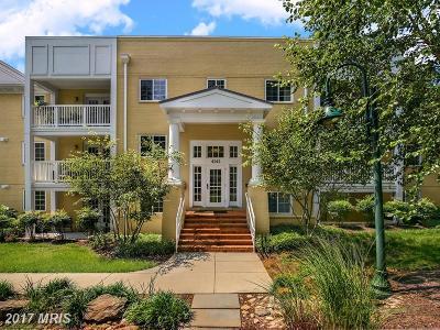Arlington Condo For Sale: 4141 Four Mile Run Drive #103