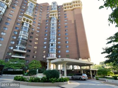 Arlington Rental For Rent: 1600 Oak Street N #303