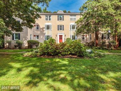 Arlington Condo For Sale: 704 Arlington Mill Drive S #17203