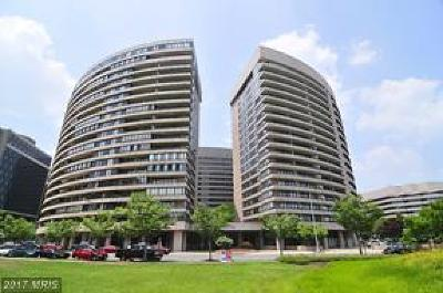 Arlington Condo For Sale: 1300 Crystal Drive #204S