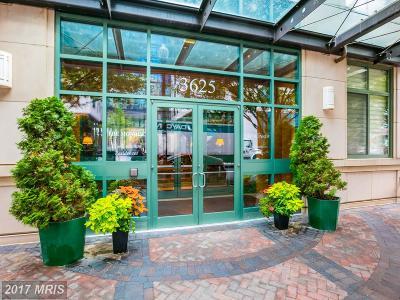 Arlington Condo For Sale: 3625 10th Street N #208
