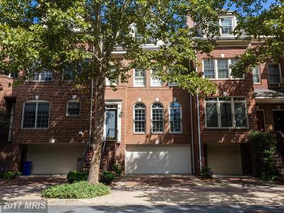 Arlington Townhouse For Sale: 1512 Colonial Terrace N