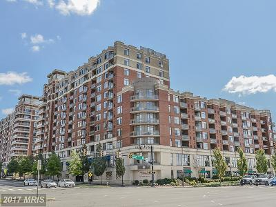 Arlington Condo For Sale: 3600 Glebe Road #403W