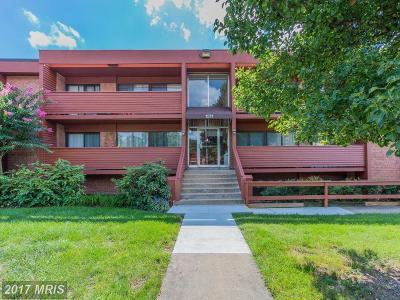 Arlington Condo For Sale: 1511 George Mason Drive S #10