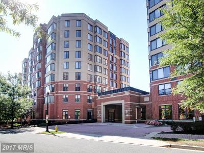 Arlington Condo For Sale: 2220 Fairfax Drive N #811