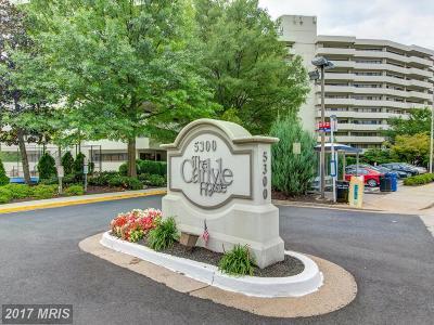 Arlington Condo For Sale: 5300 Columbia Pike #T-15